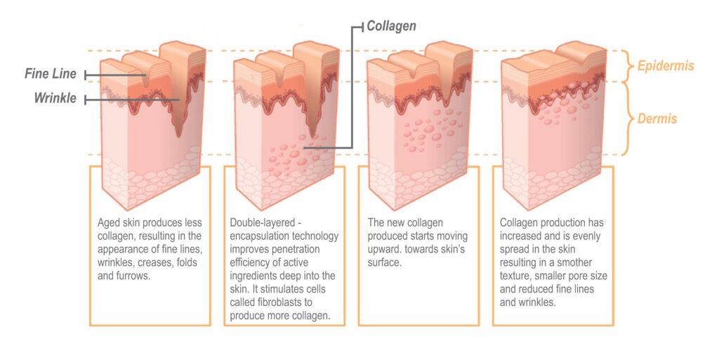collagen-capsules